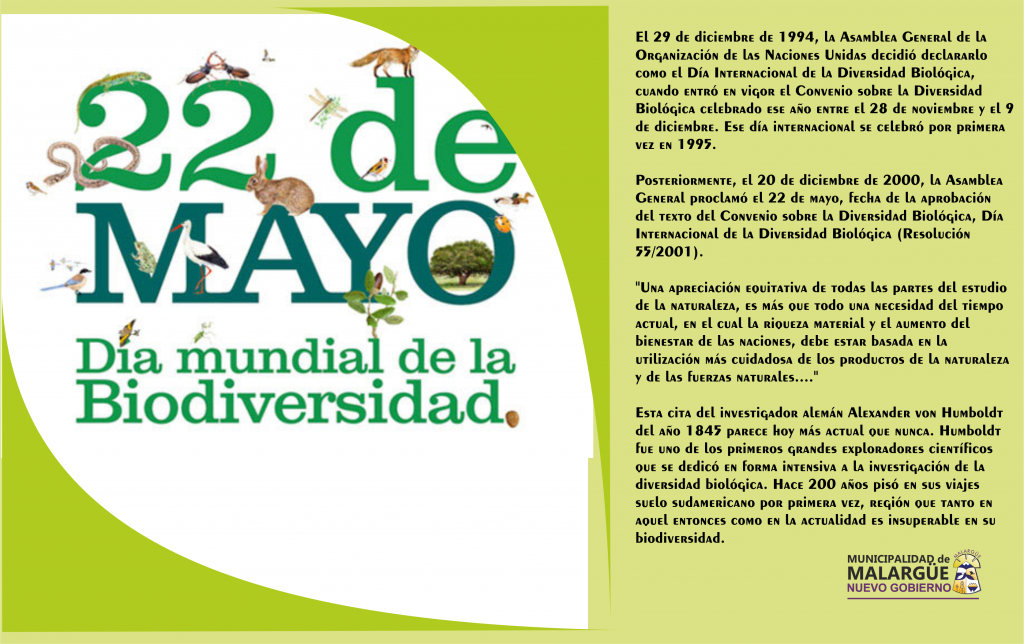 22 de mayo día de la diversidad  biologica