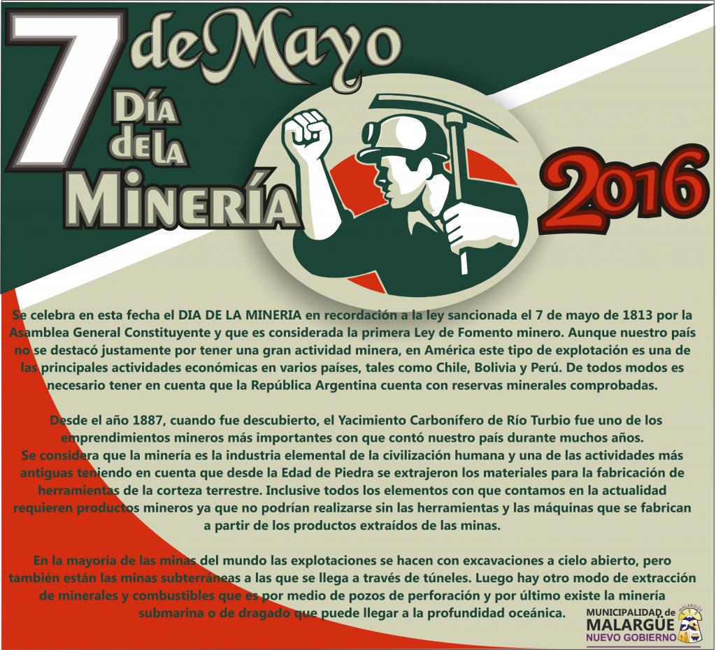 7 día de la mineria