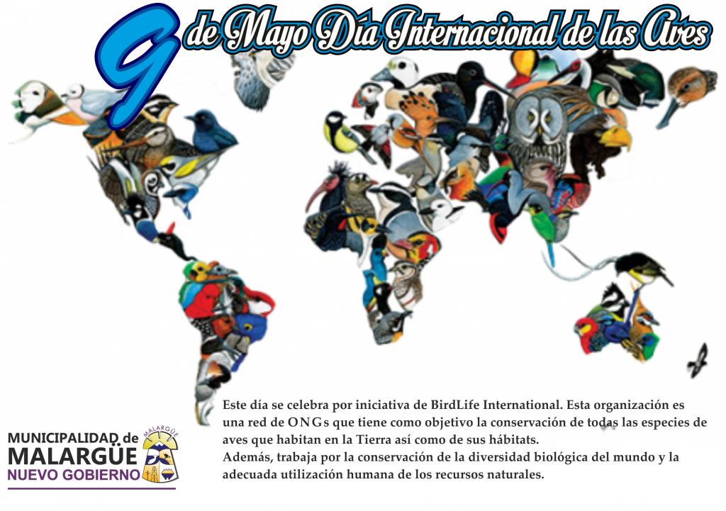 9 día internacional de las aves