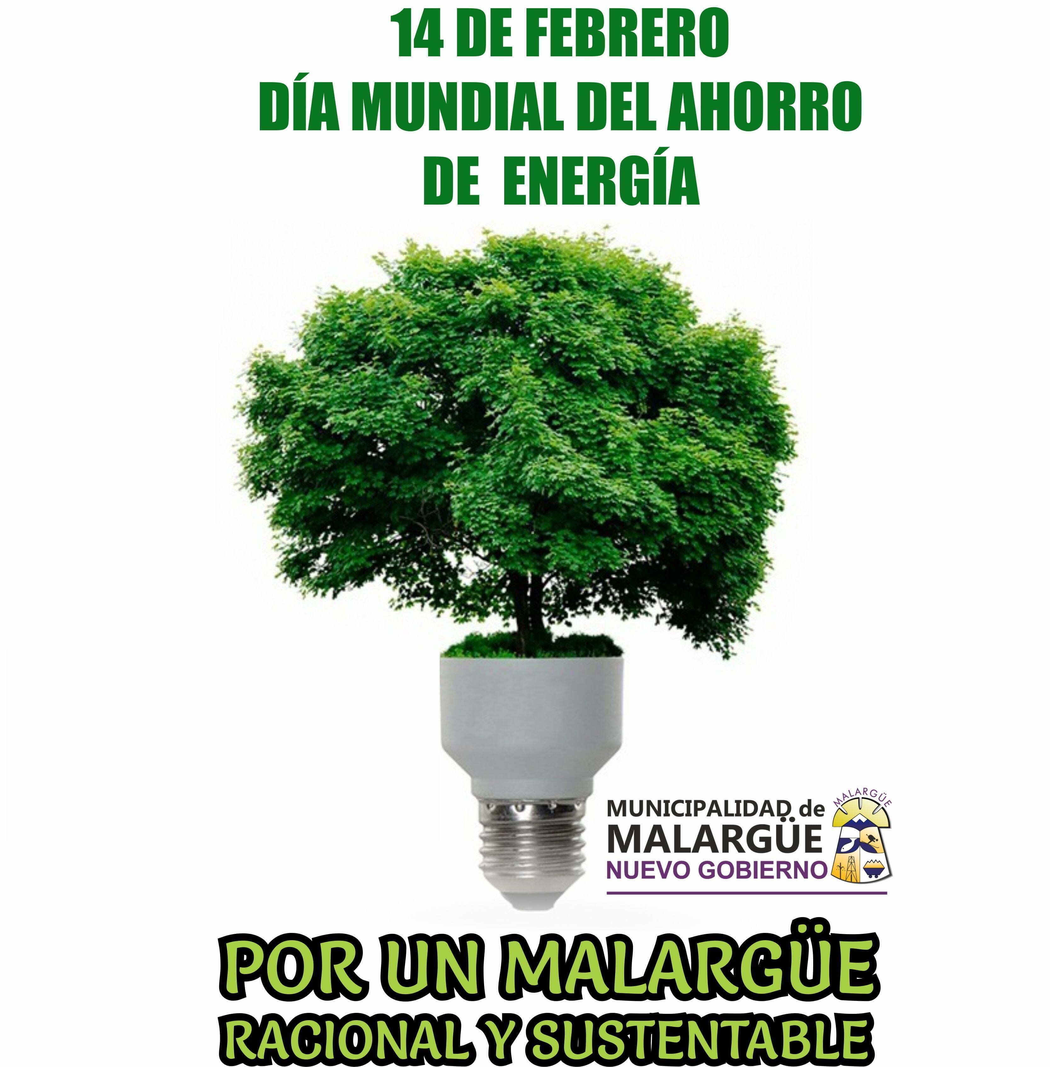 14 de Febrero Día Mundial del Ahorro de Energía